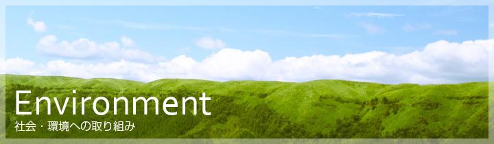 ttl_environment